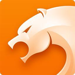 猎豹浏览器 v5.4 精简版下载