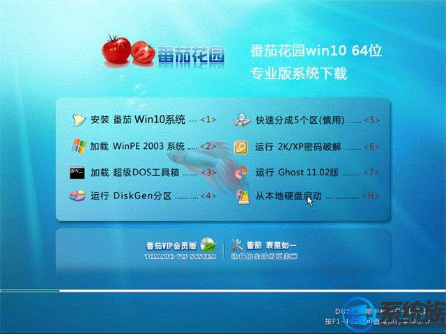 番茄花园win10 64位专业版系统下载v0113