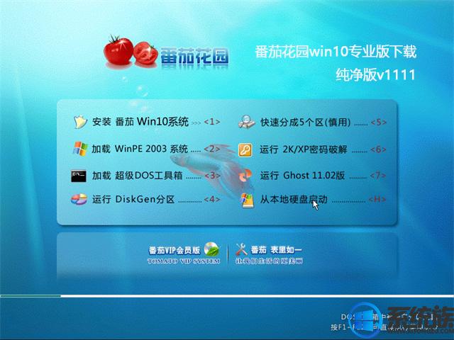 番茄花园win10专业版下载纯净版v1111
