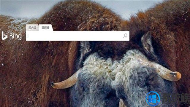 微软正式向中国用户推出Bing国际版搜索引擎