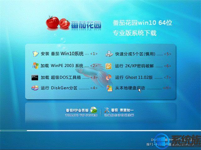 番茄花园win10 64位专业版系统下载v0119